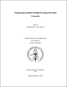 Engineering thesis