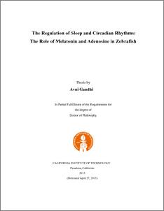 Online phd thesis mahatma gandhi university Gandhi essay thesis  ente veedu malayalam essay amma