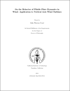 On the Behavior of Pliable Plate Dynamics in Wind: Application to